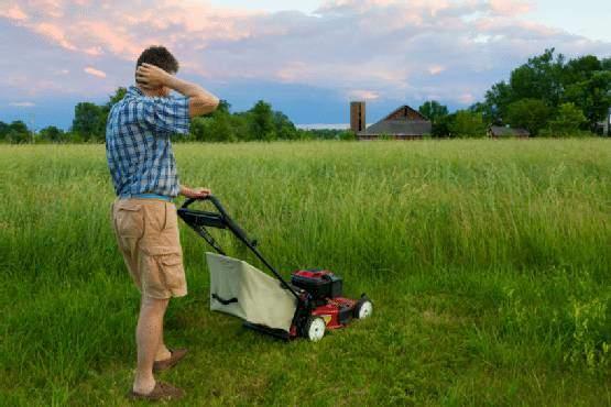 5 Common Lawncare Mistakes | ALC Turf