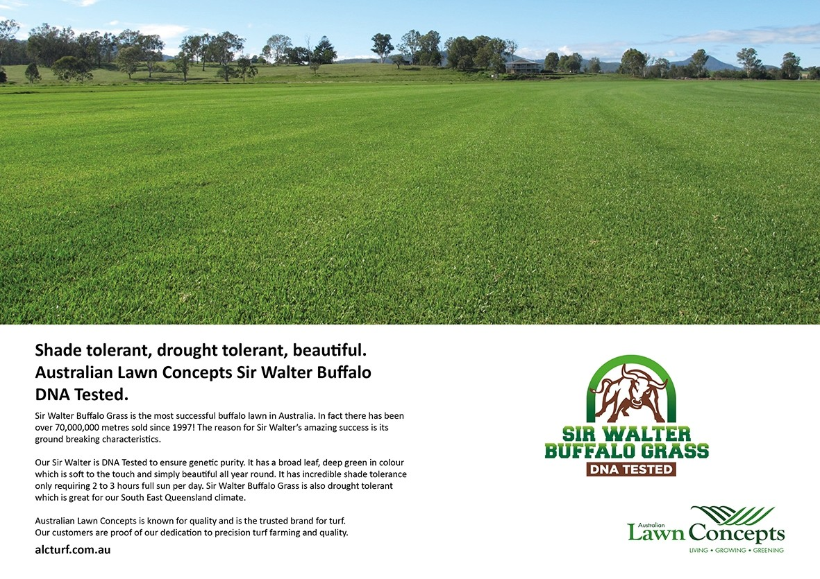 Australian Lawn Concepts Sir Walter Buffalo Grass DNA Tested
